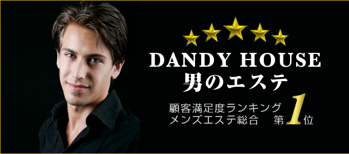 dandy-top2013feb